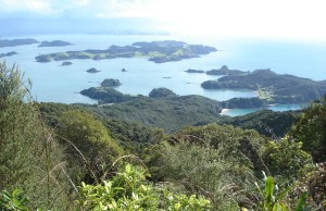 Ipipiri- the eastern Bay of Islands
