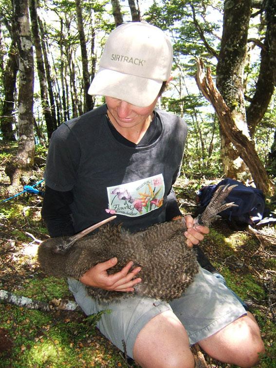 Sacha kneeling on the ground, holding a large kiwi.