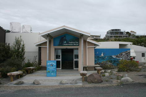 Marine information conservation blog for Landscaping rocks new plymouth