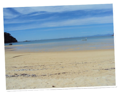 Idyllic image of  a beach on the Abel Tasman Coastal Track.