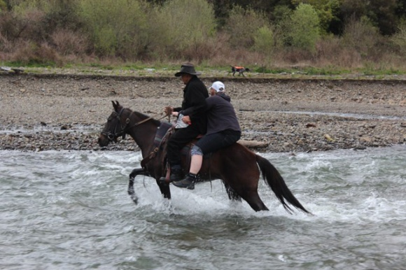 Tuhoe Waimana Kaumatua Paki Te Pou and Robyn crossing the stream on a horse.