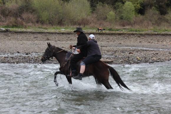 Tuhoe Waimana Kaumatua Paki Te Pou and Robyn crossing the stream on a horse.