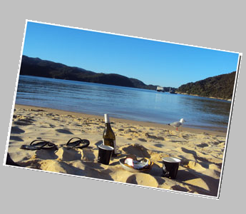 A bottle of wine on a beach at  a bay along the Abel Tasman Track.