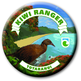 Kiwi Ranger activities are available at Totaranui this summer.