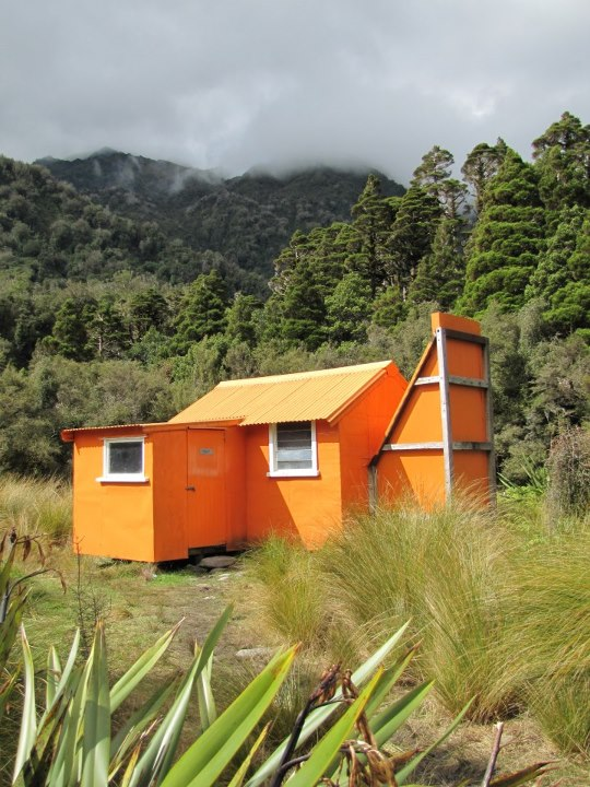 Historic 1957 deer cullers' hut (Cedar Flat).