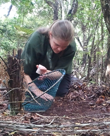 Kari Beaven prepares a catch net on Ulva Island.