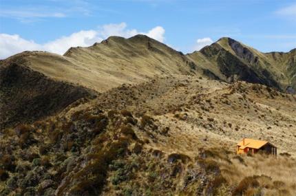 Mt Brown Hut.