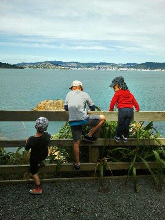 Enjoying the views from Matiu Somes Island.