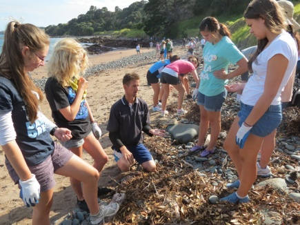 Students participate in a beach clean-up.