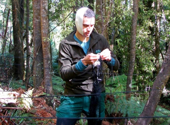 Tim Allerby during a kokako translocation.