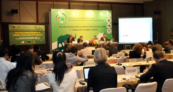 Delegates at the recent Conference of the Parties to CITES.