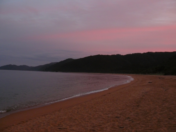 The beach at Totaranui campground at sunset.