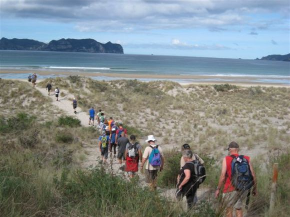 The walking group heading to Whangapoua beach.