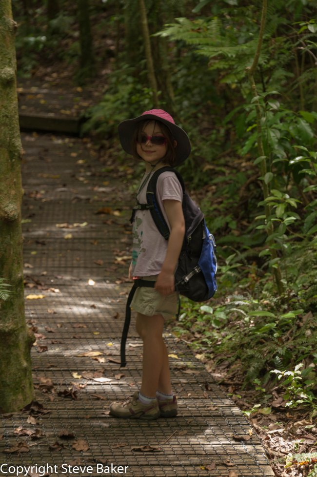 Meg on track - Tiritiri Matangi