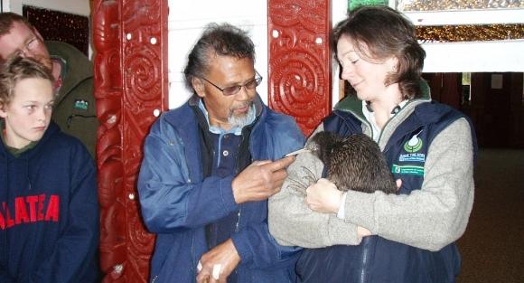 Sarah holding a kiwi during a kiwi release.