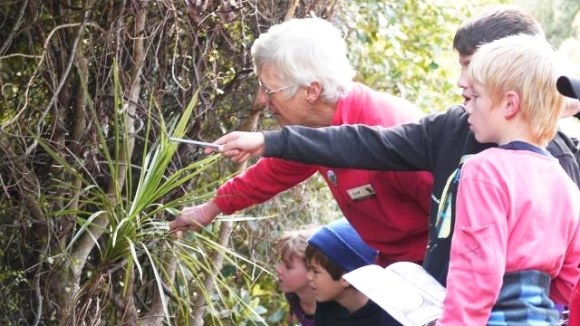 Students bird spotting with a volunteer guide at Tiritiri Matangi.