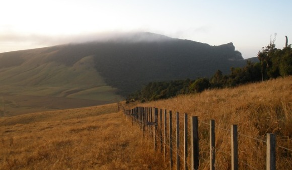 A photo of the Waitapu Saddle countryside.