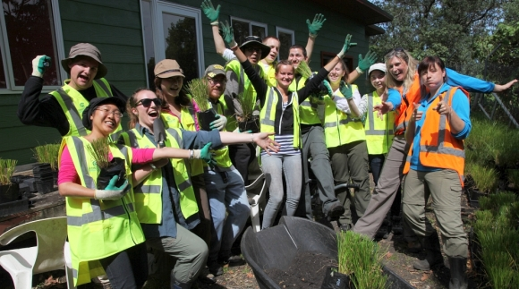Members of Conservation Volunteers NZ with a wheelbarrow of native plants.