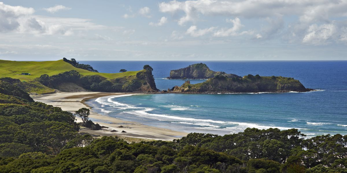 Great Barrier Island � Conservation blog