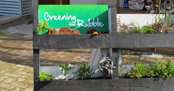 A small Greening the rubble garden in Christchurch.