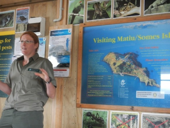 Emma Dunning (DOC) welcoming the visitors to Matiu-Somes.