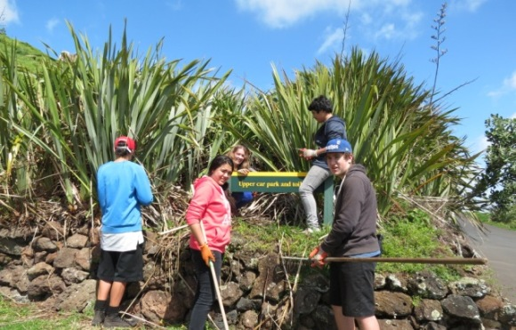 Students cleaning up the harakeke/flax bushes.