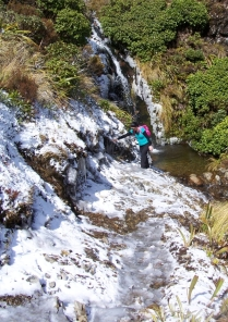 Navigating across a stream on the Rangiwahia Hut Track.