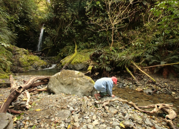 The Best Places To Go Camping In New Zealand Conservation Blog