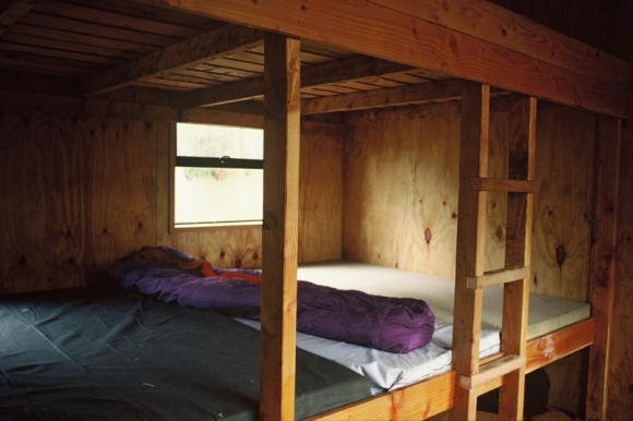 Bunks at North Arm Hut, Stewart Island.