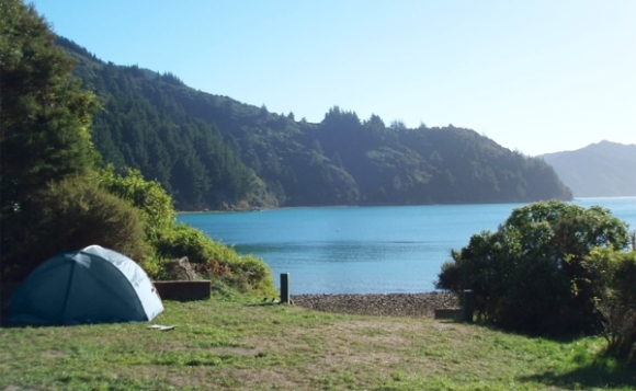 A tent at Wharehunga Bay campsite on Arapawa Island.