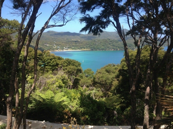 The view from The Lookout Homestead on Great Barrier Island.