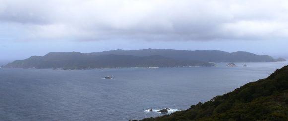 Looking down on Codfish Island.