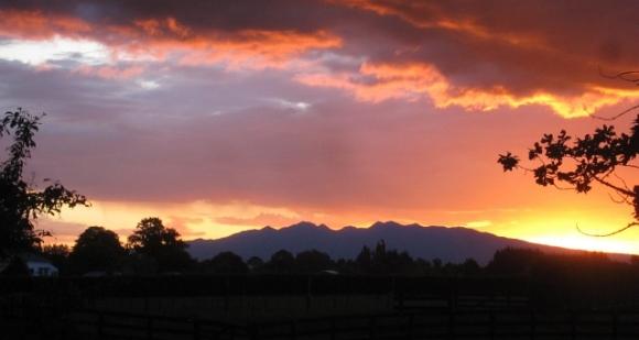 Mount Pirongia.