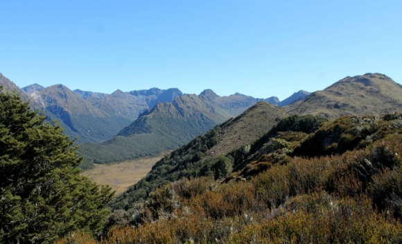 The Murchison Mountains.