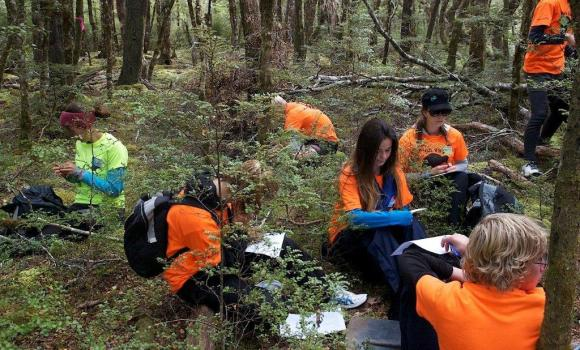 Students conducting plant identification. Photo: Steve Attwood.