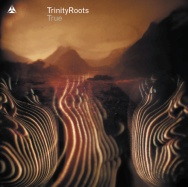 True - Trinity Roots