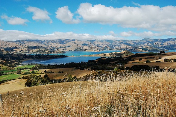 Akaroa Harbour. Photo: Daniel Pietzsch | CC BY-NC 2.0.