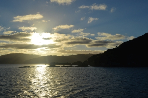 Matiu/Somes Island at the end of the day.