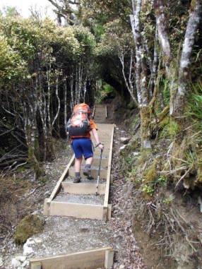 Steps on the track to Rangiwahia.