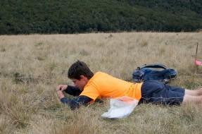 Surveying the lichens and bryophytes. Photo: Jon Sullivan | CC BY-NC 2.0.