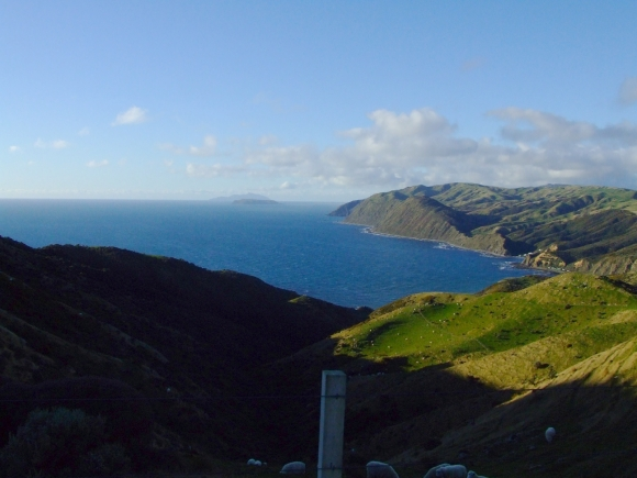 Views of the coastline along the Makara Walkway.