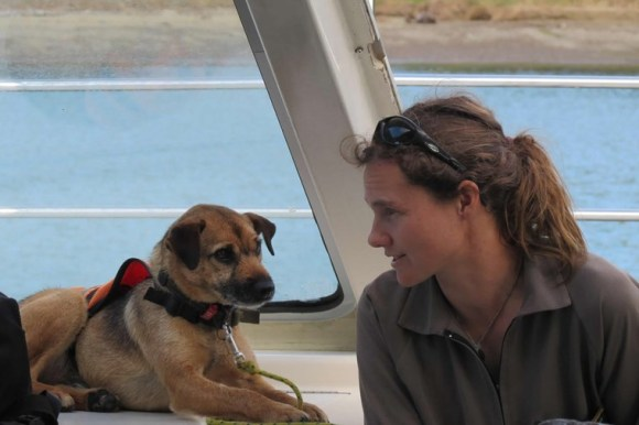 Ranger and conservation dog on the boat. Photo: Richard Robbins/Sally Wells.