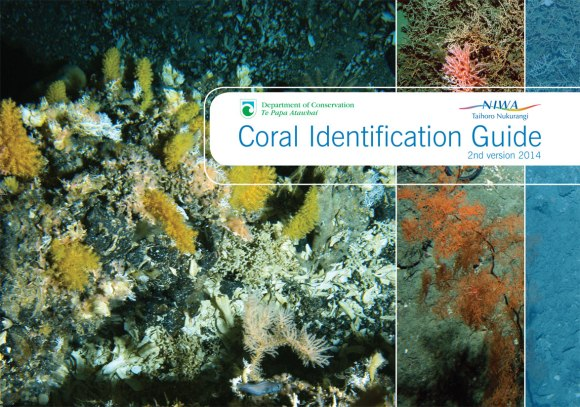 Cover of the new Coral Identification Guide.