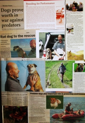 Conservation Dogs In the news.