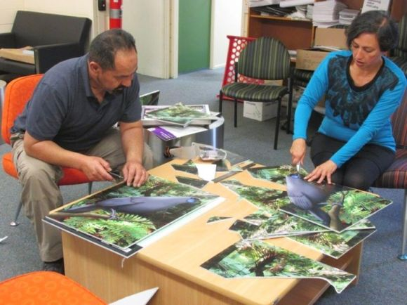 Rangers Bella Tait and Joe Tahana cutting out corflute kōkako for Conservation Week.