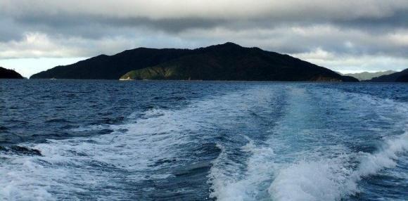 Blumine Island.
