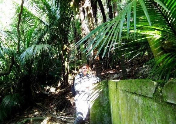 Ranger Megan blending into the nīkau forest on Blumine Island.
