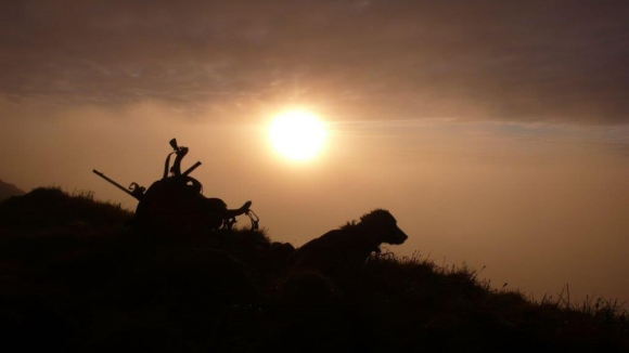 A winter sunset on the southern part of Macquarie Island. Silhouette of pack and dog on a hill.