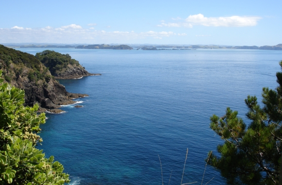 Motuarohia/Roberton Island - the view north. Photo: David Ten Have | CC BY-NC 2.0.