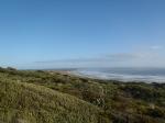 Henga Walk, Henga Scenic Reserve, Chatham Islands.